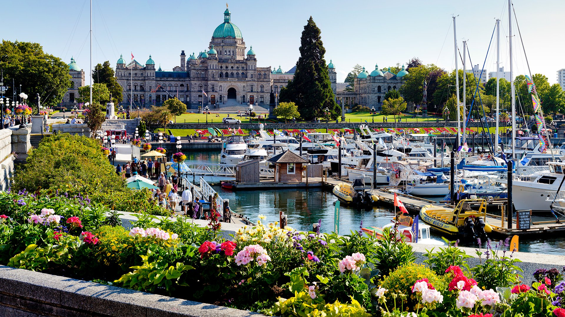 8 Reasons You Should Move Your Career To Victoria Bc Llamazoo